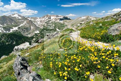 Szlaki turystyczne Przez Kwiaty Colorado góry