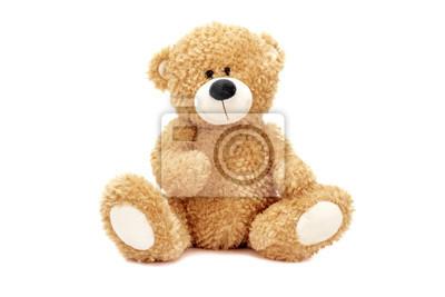 Obraz Teddy bear