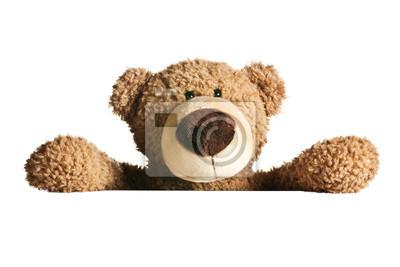 Obraz teddy bear tyłu tablicy
