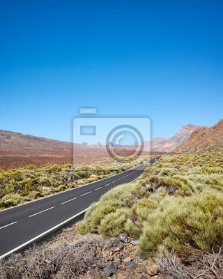 Teide National Park scenic landscape, Tenerife, Spain.