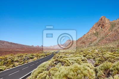 Teide National Park scenic landscape with an asphalt road, Tenerife, Spain.