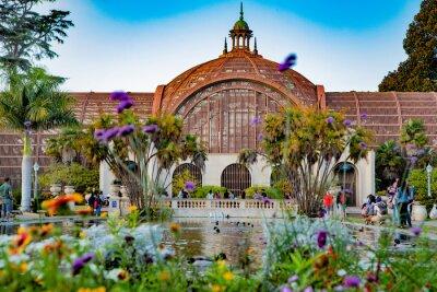 Obraz The Lily Pond at Balboa Park, San Diego, California.