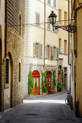Obraz The Via Lambertesca street at historic center of Florence, Italy