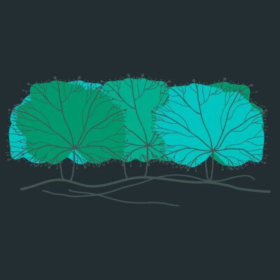 Obraz tło drzewa