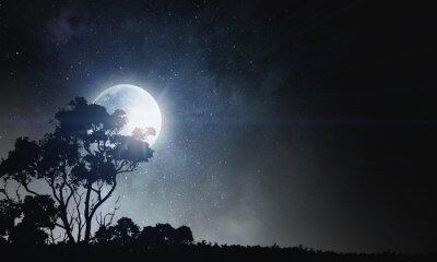 Obraz Tło nocy letniej