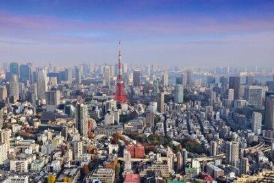 Obraz Tokyo skyline - aerial city view with Roppongi and Minato wards.