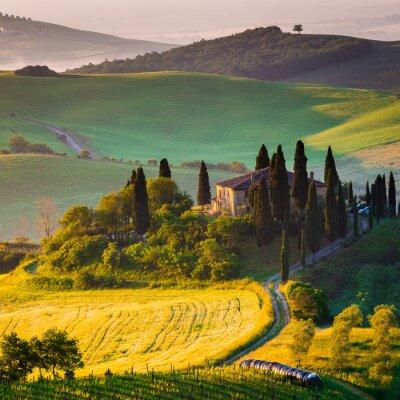 Obraz Toscana, mattino w Val d'Orcia