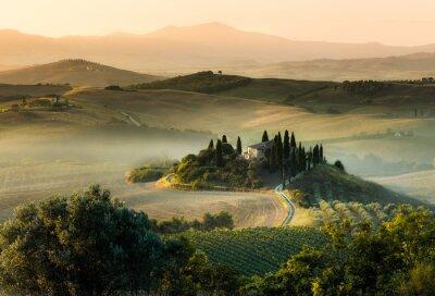 Obraz Toskania Włochy mglisty poranek panorama wzgórza