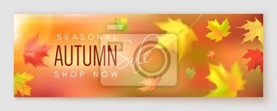 Obraz Transparent sprzedaży jesienią