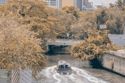 Transport / Widok na statek pasażerski na kanale z tłem miasta. Ruch.