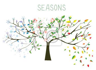 Obraz Tree during four seasons concept