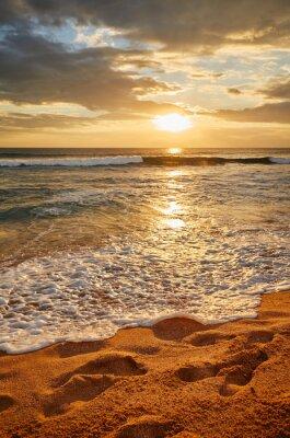 Tropical beach at beautiful golden sunset, Sri Lanka.