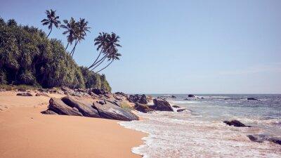 Tropical beach, color toning applied, Sri Lanka.