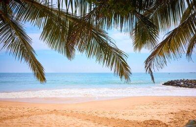 Tropical beach, summer vacation concept.