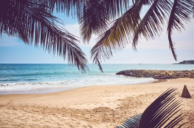 Tropical beach, summer vacation concept, color toning applied, Sri Lanka.