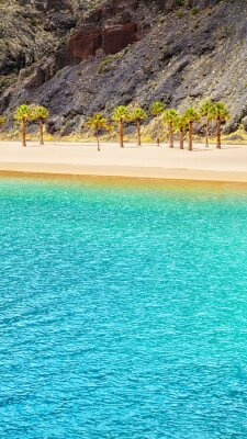 Tropical beach, summer vacation scenery.