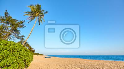 Tropical beach with cloudless sky, Sri Lanka.