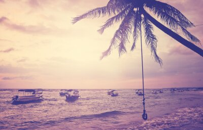 Tropical beach with coconut palm tree at sunset, color toning applied, Sri Lanka.