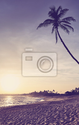 Tropical beach with coconut palm tree silhouette at sunset, color toning applied, Sri Lanka.