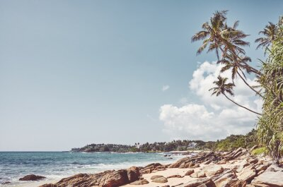Tropical beach with coconut palm trees, retro colors toning applied, Sri Lanka.