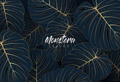 Obraz Tropical elegant monstera leaves. Luxury nature leaf texture design with golden line arts on dark blue background. Hand drawn leaf outline element. Luxury simple monstera leaf vector concept.