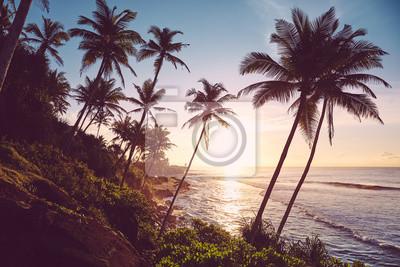 Tropical island at sunrise, color toned picture, Sri Lanka.
