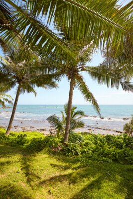 Tropical landscape with palm trees and the sea.