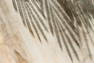Obraz Tropical shadow on the beige wall. Minimal summer travel background