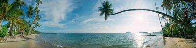 Tropikalna plaża panorama