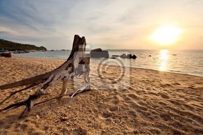Tropikalna słońca na plaży. Tajlandia