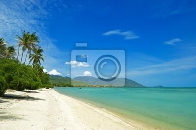 Obraz tropikalnej plaży