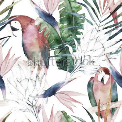 Obraz Tropikalny wzór z papugi, protea i liści. Letni wydruk w akwarela. Egzotyczna ręka rysująca ilustracja