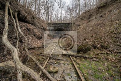 Tunel wejście