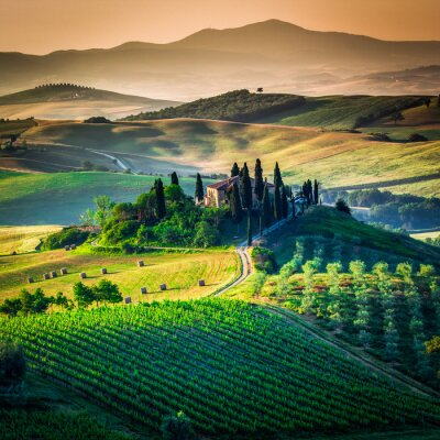 Obraz Tuscan kraj