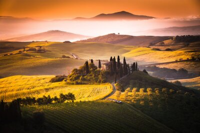 Obraz Tuscan Morning