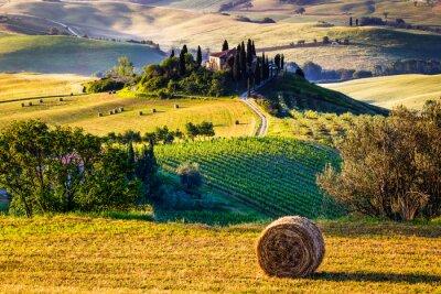 Obraz Tuscany, landscape