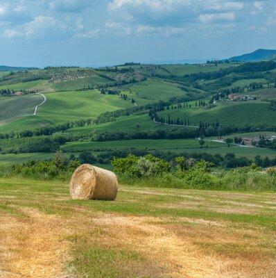 Obraz Typowy toskański krajobraz