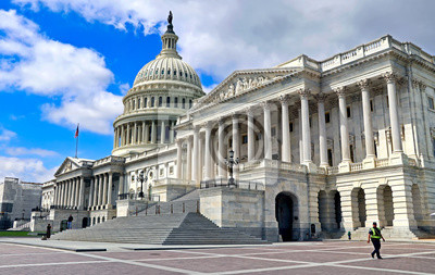 Obraz U.S. Capitol Building in Washington DC