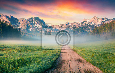 Obraz Unbelievable summer sunrise in Durmitor Nacionalni Park. Spectacular foggy view of of Montenegro countryside, Zabljak town location. Beautiful world of Mediterranean countries.