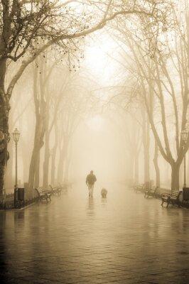 Urlop mężczyzn z psem w mgle