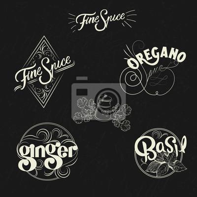 Ustawić Spice logo w stylu vintage. Retro ręcznie rysowane przyprawy