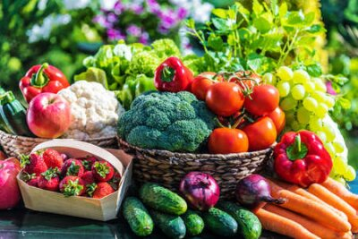 Obraz Variety of fresh organic vegetables and fruits in the garden. Balanced diet