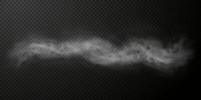 Obraz Vector smoke png. Vector dynamic fog or smoke. Vector cloud on transparent dark background png.
