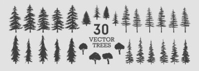 Obraz Vector trees - collection of 30 detailed and different tree silhouette illustrations. Eps set.