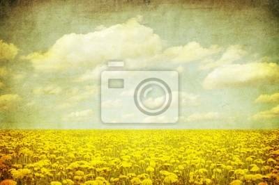 vintage obraz dandelion dziedzinie.