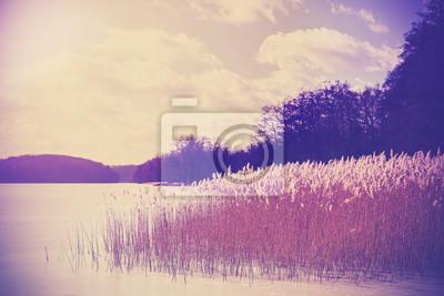 Vintage retro stonowanych obraz jeziora w zimie.