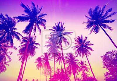 Vintage stonowanych palmy sylwetki o zachodzie słońca.