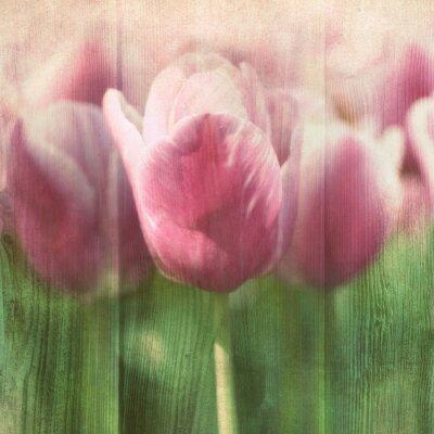 Obraz Vintage tulipany