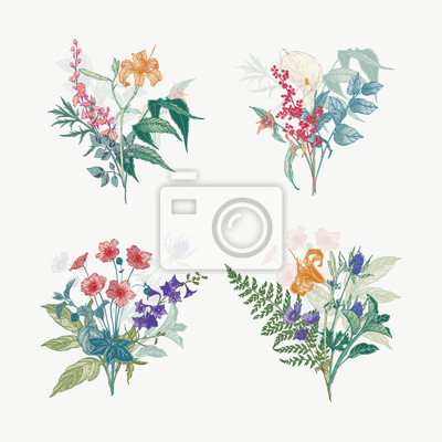 Obraz Vintage wild flower bouquet illustration set. Isolated colored botanical herbs and flowers hand drawn graphic. Collection of botanical arrangement for wedding decor