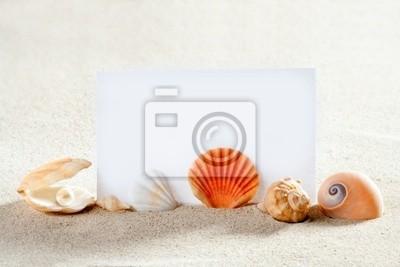 wakacje na plaży, piasek, muszle ślimaków perła czysty papier